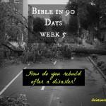 Week 5 Bible in 90 Days