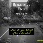 bible 90 days week 5