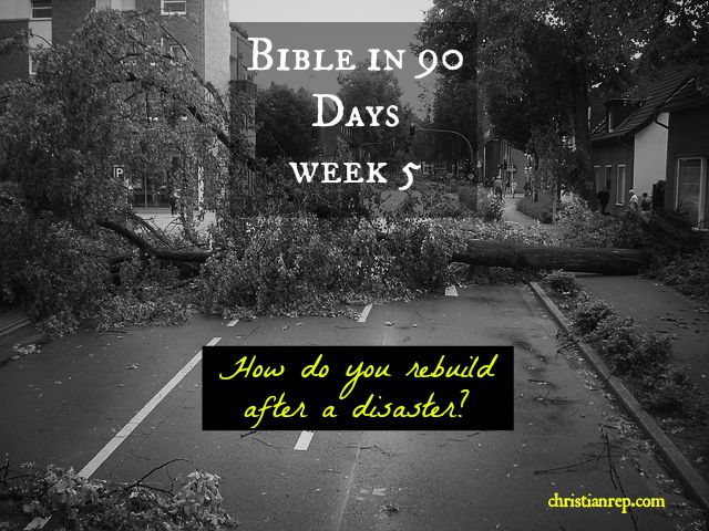 Week 5 Bible in 90 Days