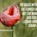 Gods word is forever isaiah 40.8